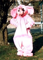 Yup, this is me as the Pink Elephant!